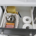 Organised bathroom vanities